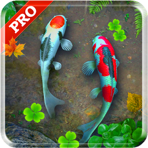 Free download koi pond pro live wallpaper apk for android for Koi pond game online